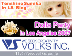 Volks inc